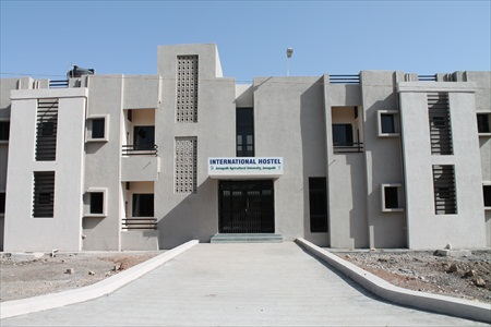 InternationalHostel